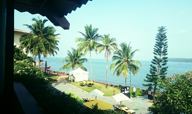 f:id:tokyo-bangalore:20161103160639j:image