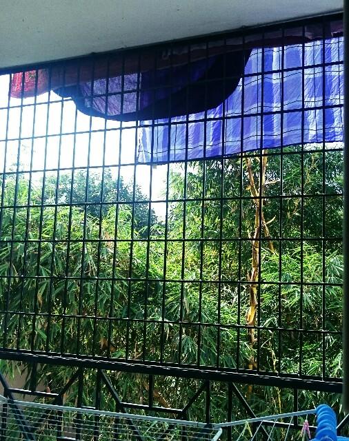 f:id:tokyo-bangalore:20161110132035j:image