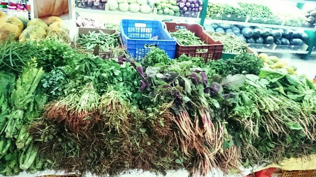 f:id:tokyo-bangalore:20170123153128j:image