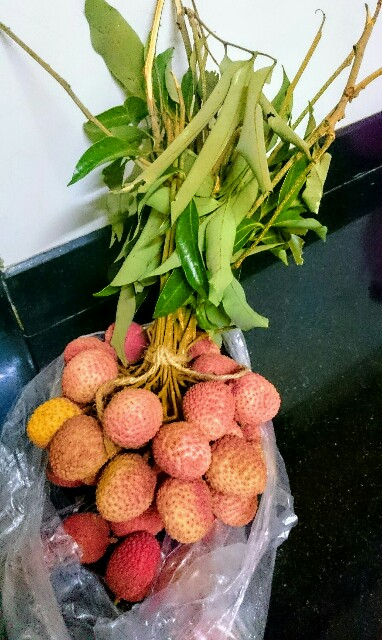 f:id:tokyo-bangalore:20170511003909j:image
