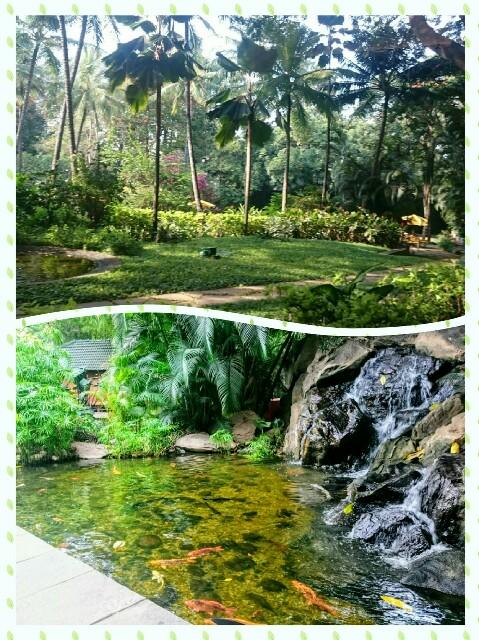 f:id:tokyo-bangalore:20170613004850j:image
