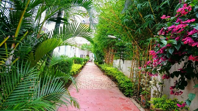 f:id:tokyo-bangalore:20170824214312j:image