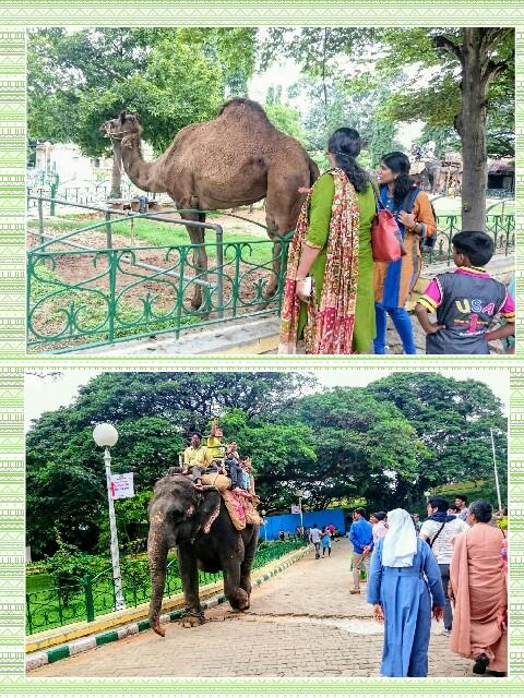 f:id:tokyo-bangalore:20170904232557j:image