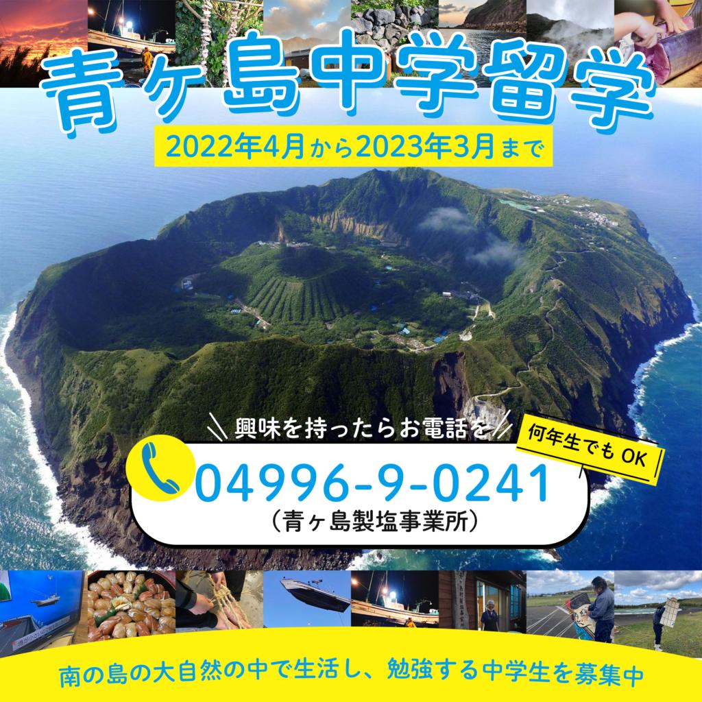 f:id:tokyo-islands:20210628222100p:plain