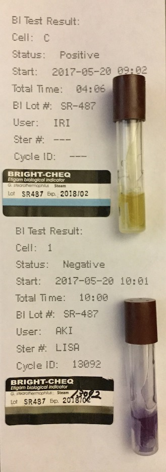 f:id:tokyo-microscope:20170522092621j:plain