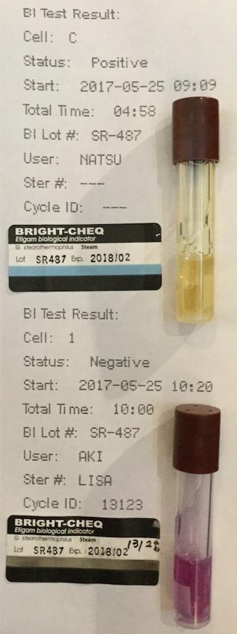 f:id:tokyo-microscope:20170526092230j:plain