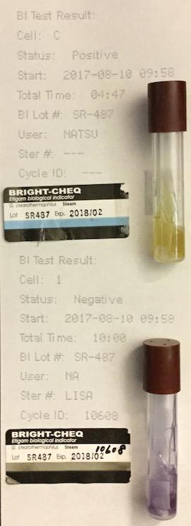 f:id:tokyo-microscope:20170812094310j:plain