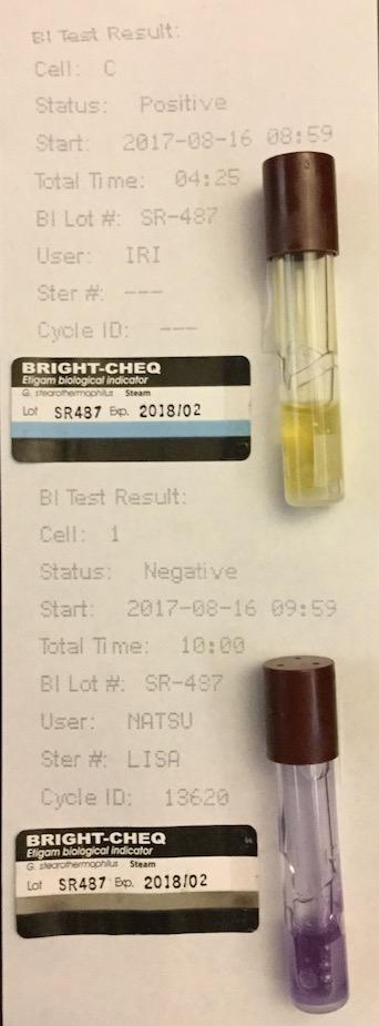 f:id:tokyo-microscope:20170817095142j:plain
