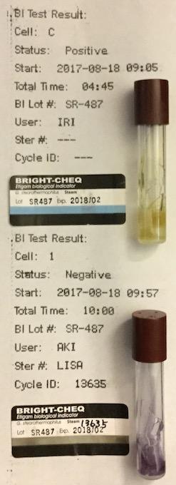 f:id:tokyo-microscope:20170821094536j:plain