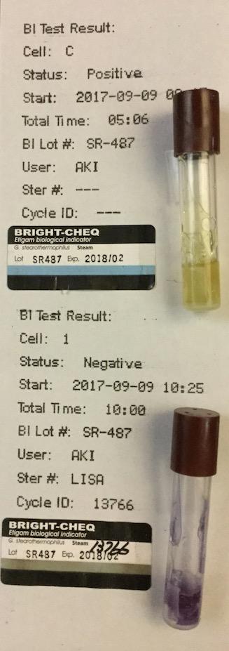 f:id:tokyo-microscope:20170911115829j:plain