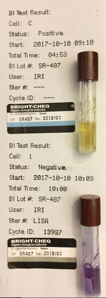 f:id:tokyo-microscope:20171011103842j:plain