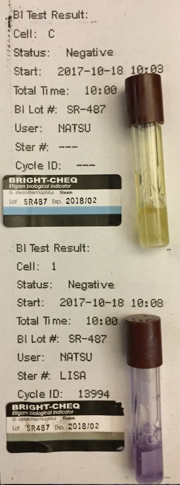 f:id:tokyo-microscope:20171019095433j:plain