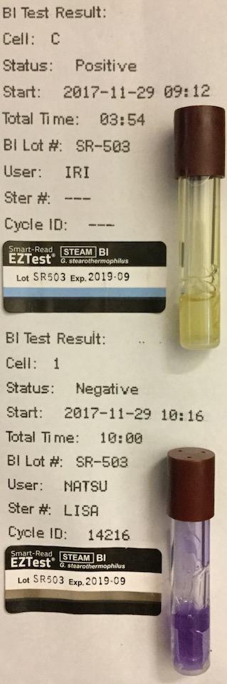 f:id:tokyo-microscope:20171201173716j:plain