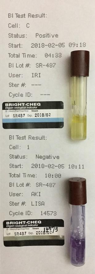 f:id:tokyo-microscope:20180206105436j:plain