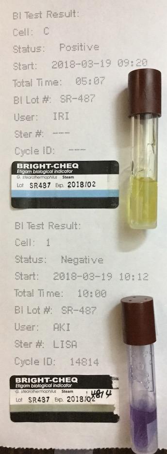 f:id:tokyo-microscope:20180320114430j:plain