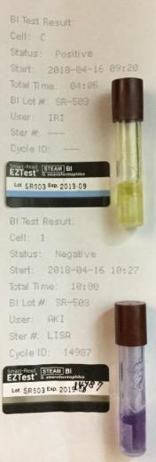 f:id:tokyo-microscope:20180417172052j:plain