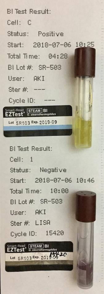 f:id:tokyo-microscope:20180707114309j:plain