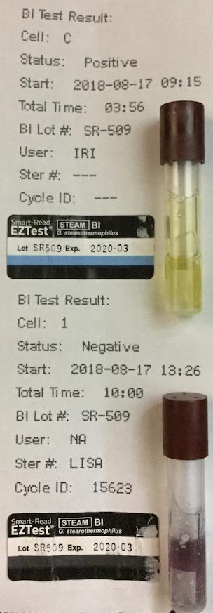 f:id:tokyo-microscope:20180818093651j:plain
