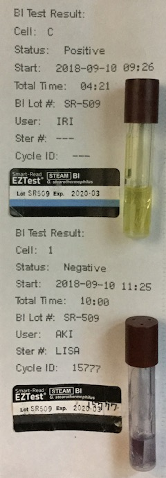 f:id:tokyo-microscope:20180912114941j:plain