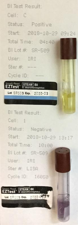 f:id:tokyo-microscope:20181030125313j:plain