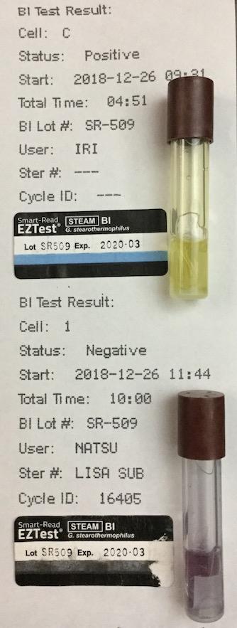 f:id:tokyo-microscope:20181227115416j:plain
