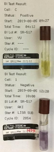 f:id:tokyo-microscope:20190806122055j:plain