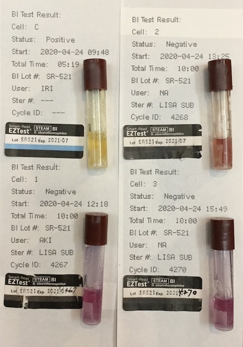f:id:tokyo-microscope:20200425095334j:plain