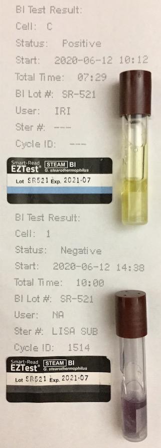 f:id:tokyo-microscope:20200613111814j:plain