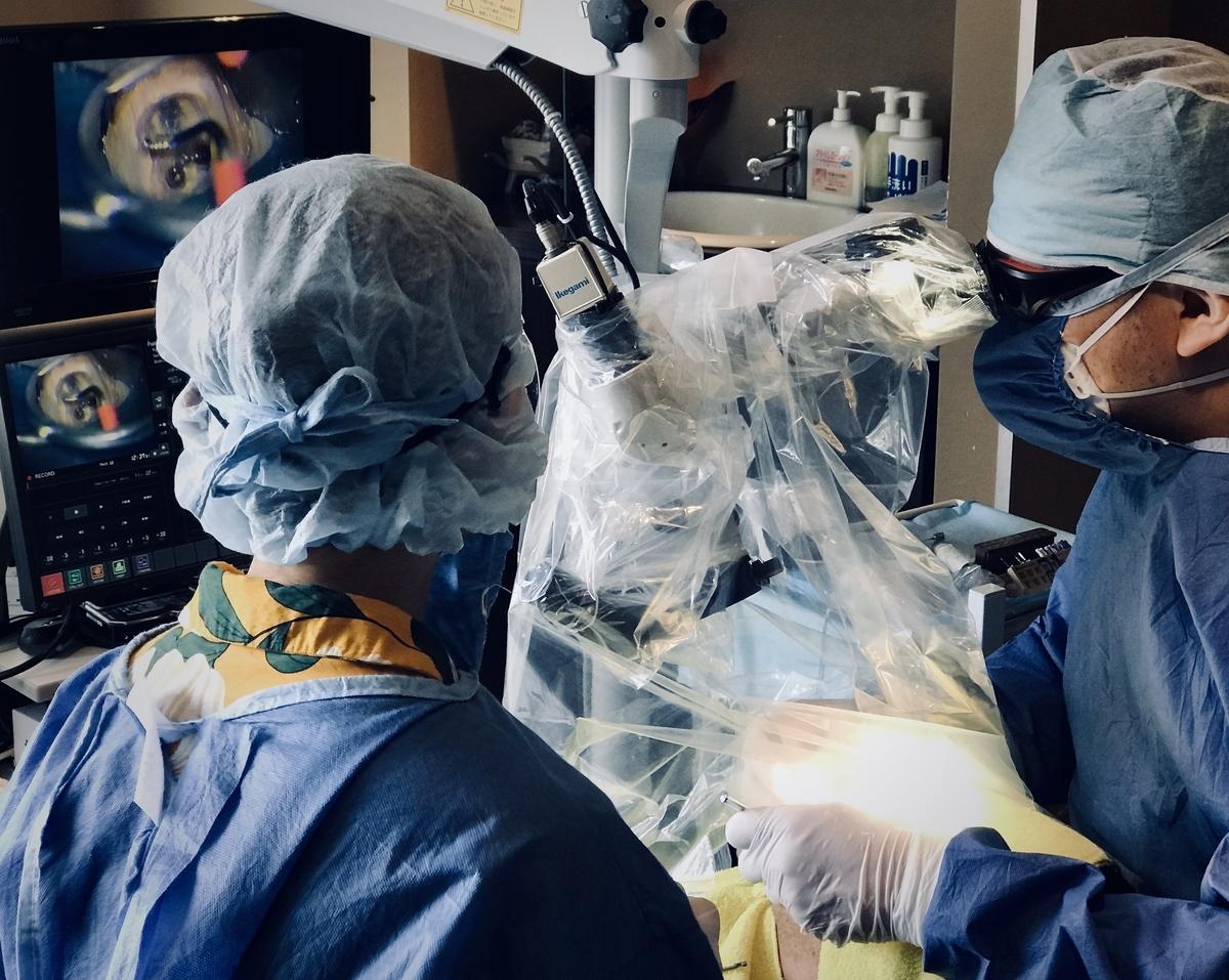 #滅菌保障 #歯科衛生士 #第一種滅菌技師  #ラバーダム