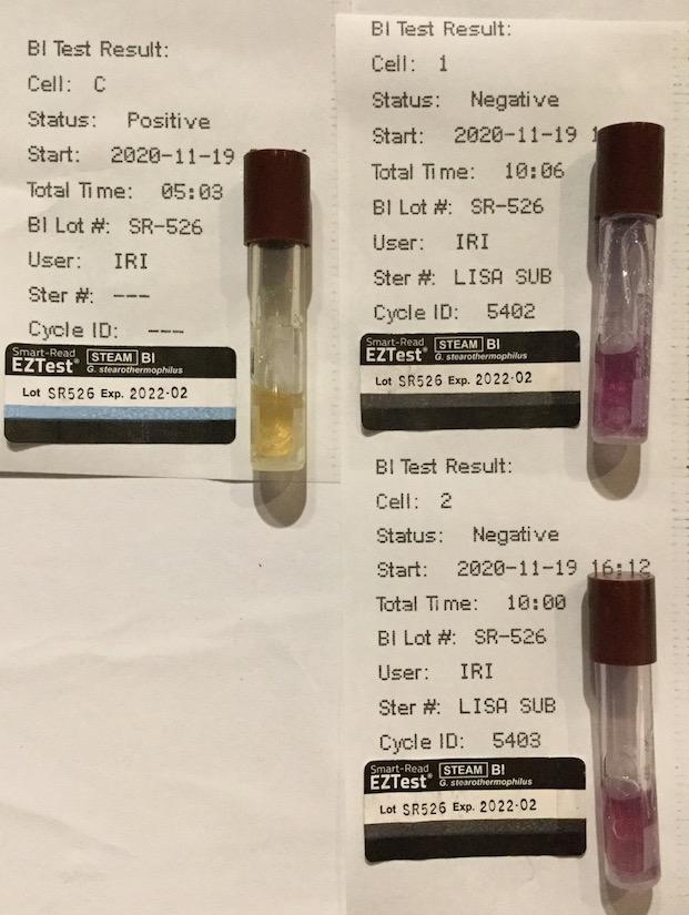 f:id:tokyo-microscope:20201120104605j:plain