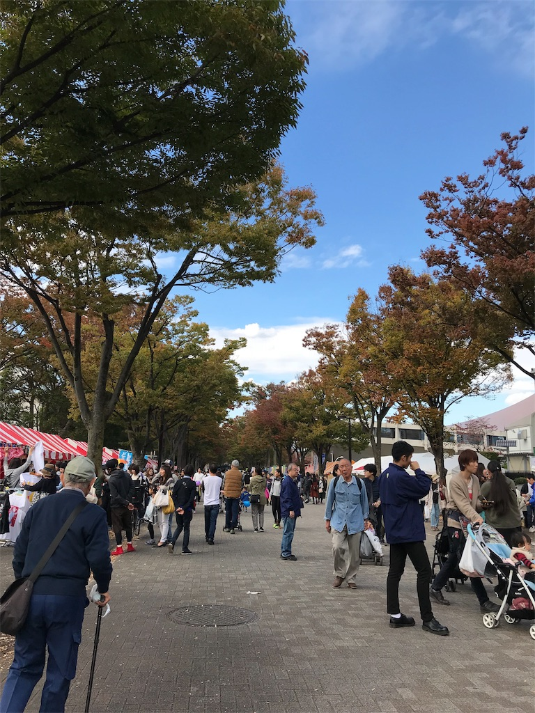 f:id:tokyo-shisei:20181105120711j:image