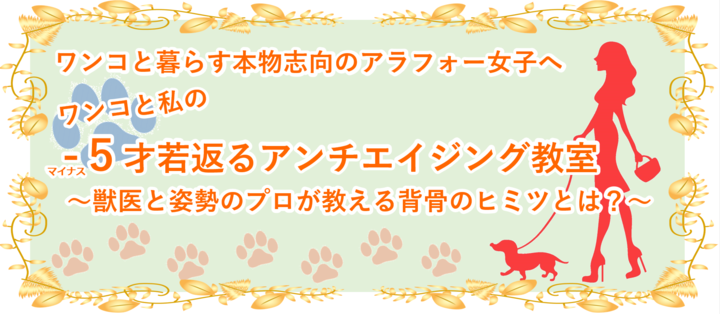 f:id:tokyo-shisei:20190619014124p:plain