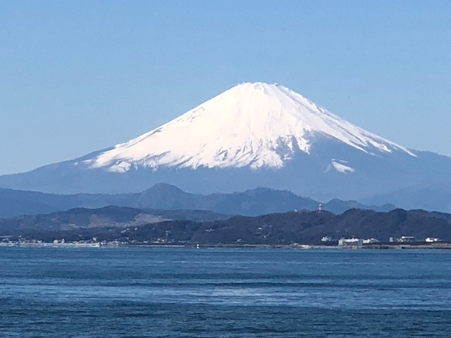 f:id:tokyo-teasalon-mori:20210222000713j:plain