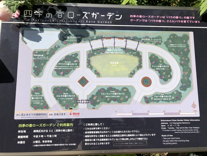 f:id:tokyoSaihakken:20180714232622j:plain