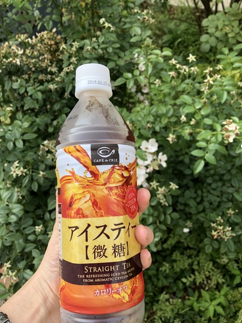 f:id:tokyoSaihakken:20180714233203j:plain