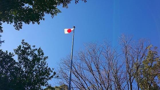 f:id:tokyo_kita8:20200202222816j:plain