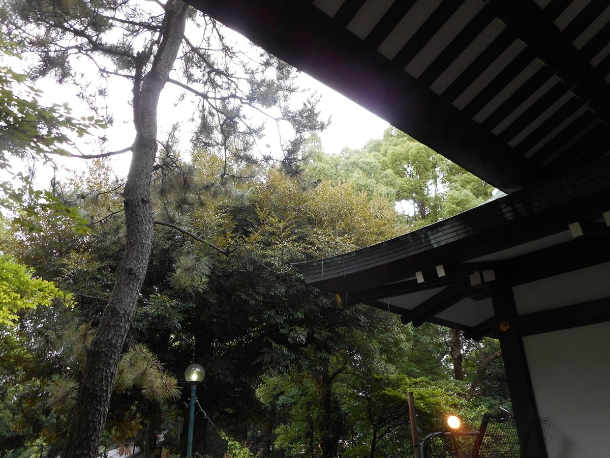f:id:tokyo_kita8:20200705162037j:plain
