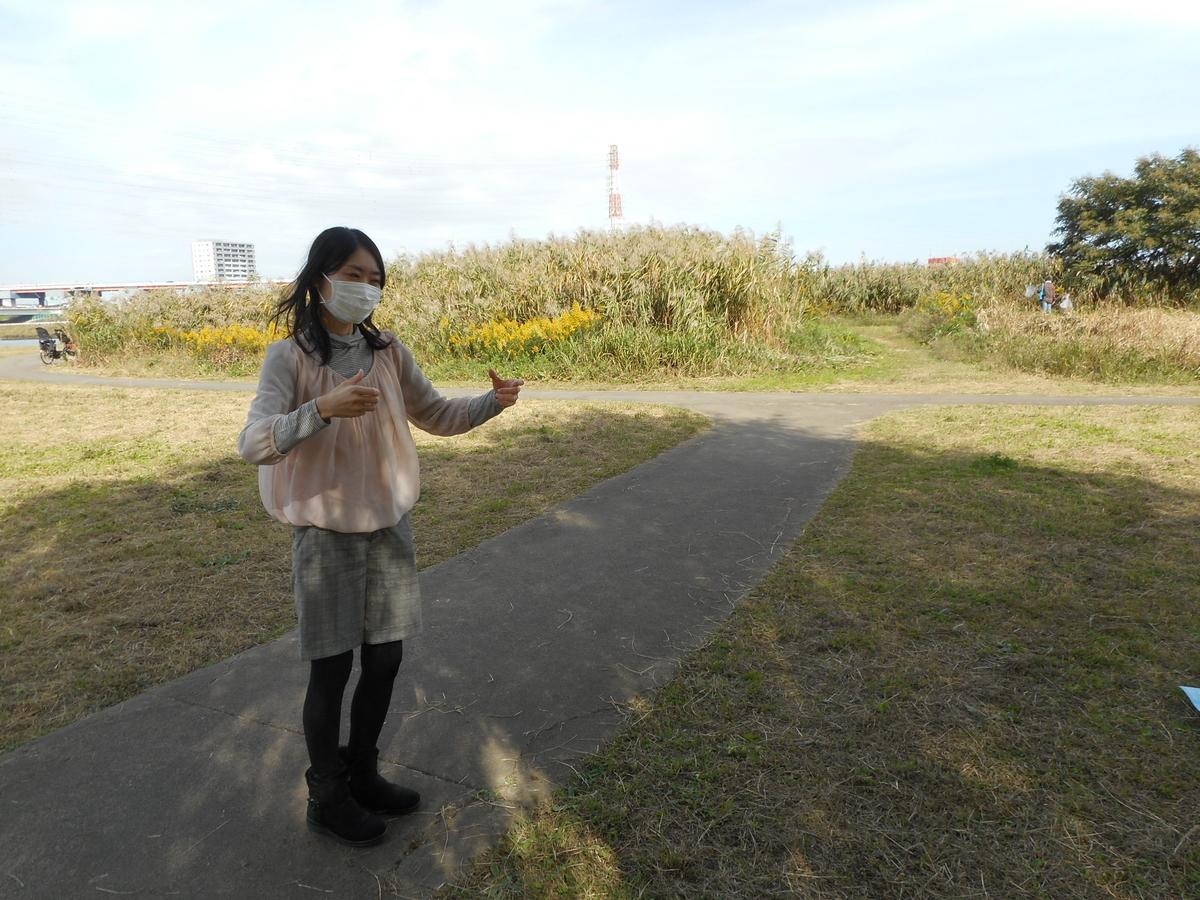 f:id:tokyo_kita8:20201101185021j:plain