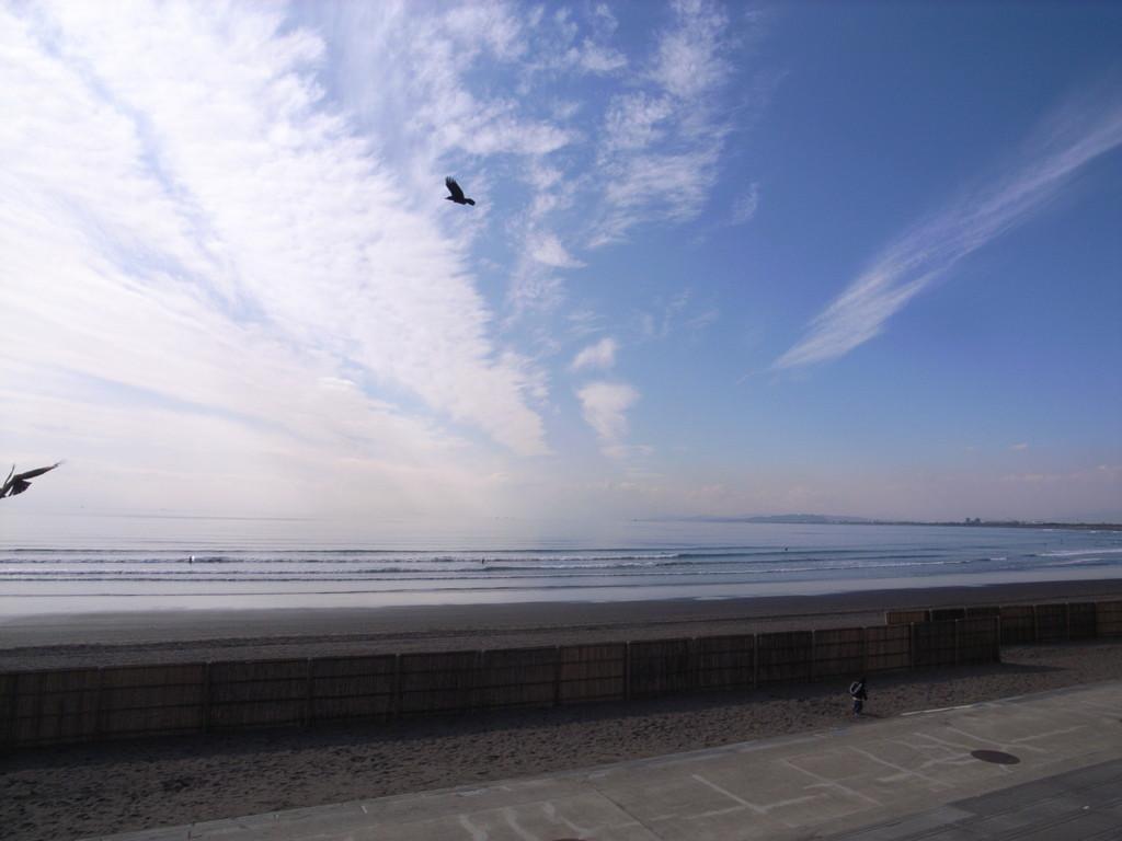 f:id:tokyo_sotai:20100204135809j:plain