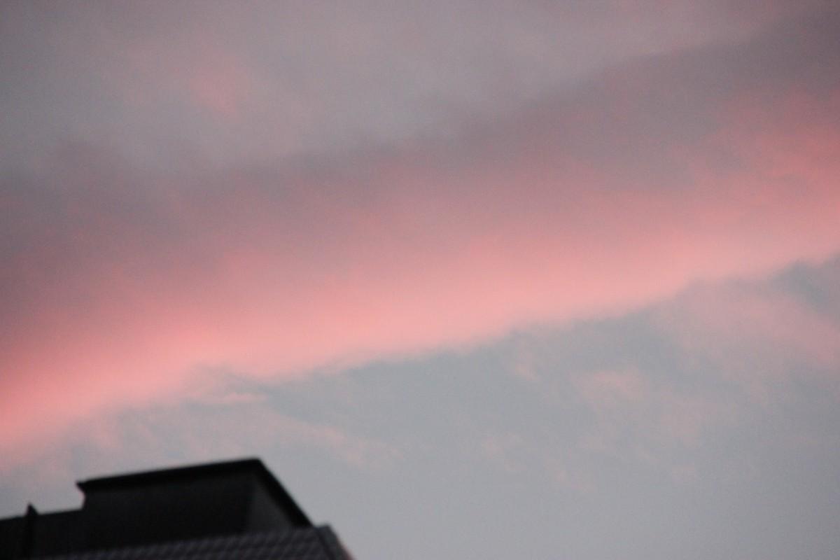 f:id:tokyo_sotai:20201225131133j:plain
