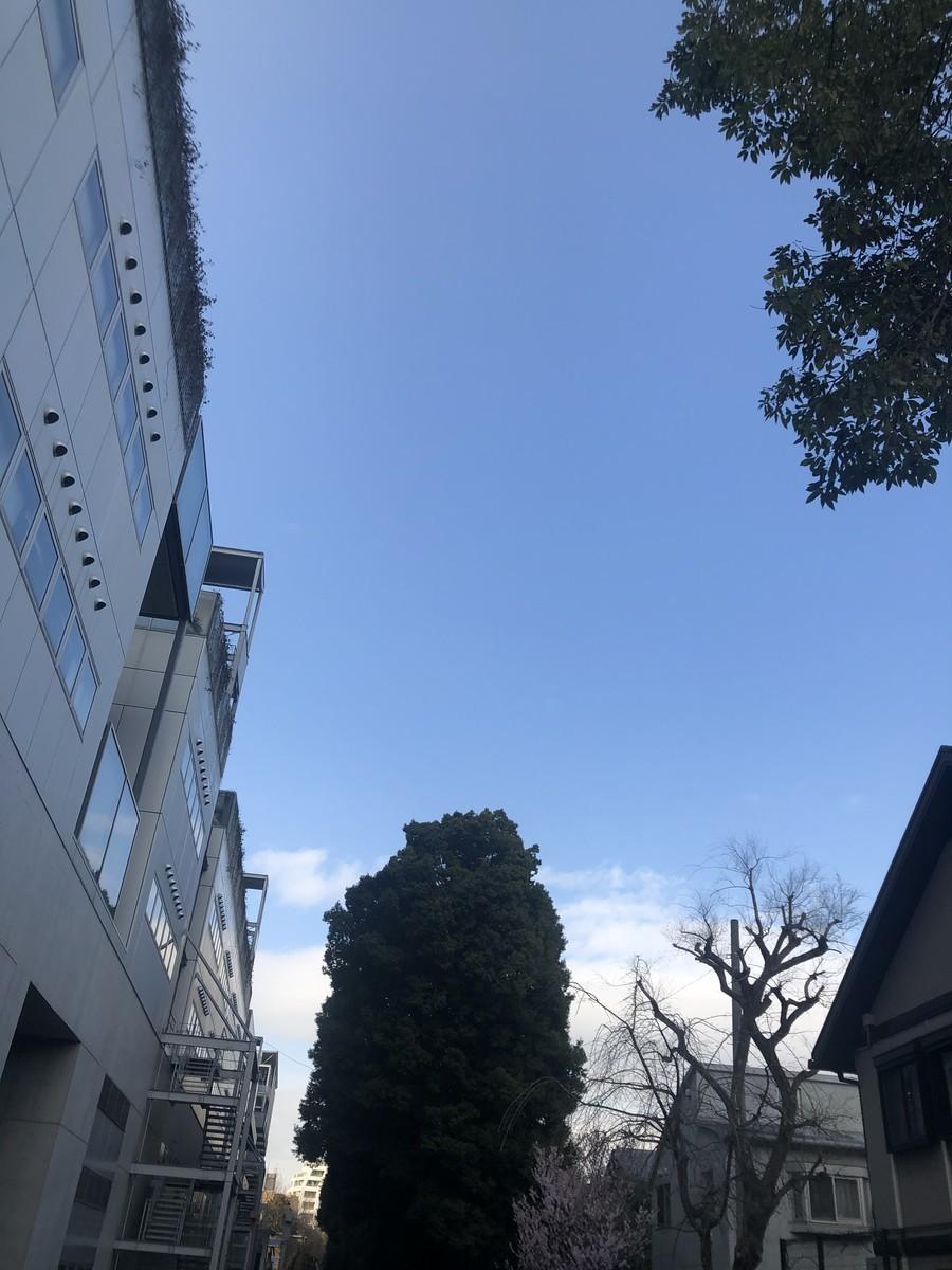 f:id:tokyo_sotai:20210310150900j:plain