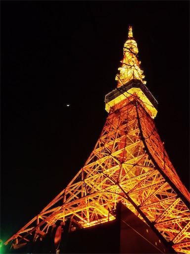 f:id:tokyo_wonderland:20210224200906j:image
