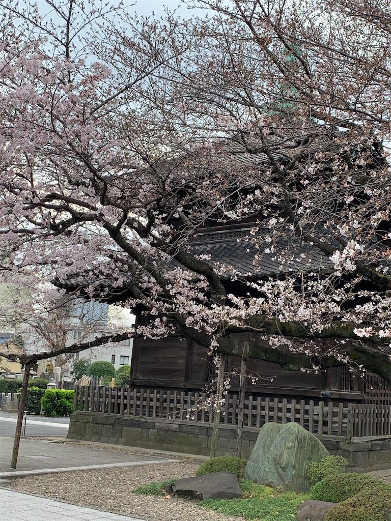 f:id:tokyoaruki:20210326144828j:image