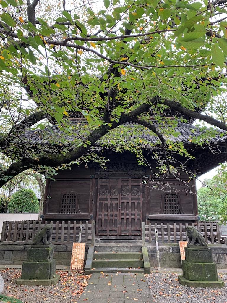 f:id:tokyoaruki:20210326145205j:image
