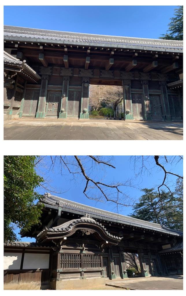 f:id:tokyoaruki:20210326150957j:image
