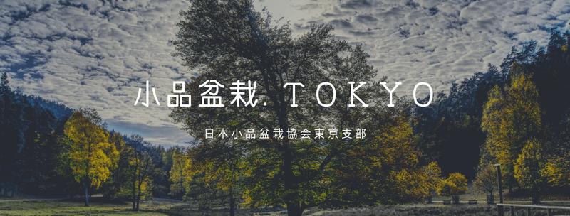 小品盆栽.TOKYO