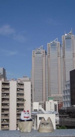 f:id:tokyocat:20090714134610j:image