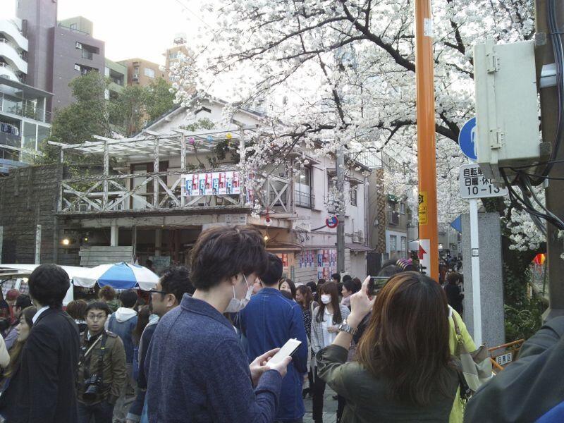 f:id:tokyocat:20130416031421j:image