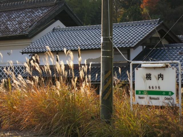 f:id:tokyocat:20141205054953j:image:w640