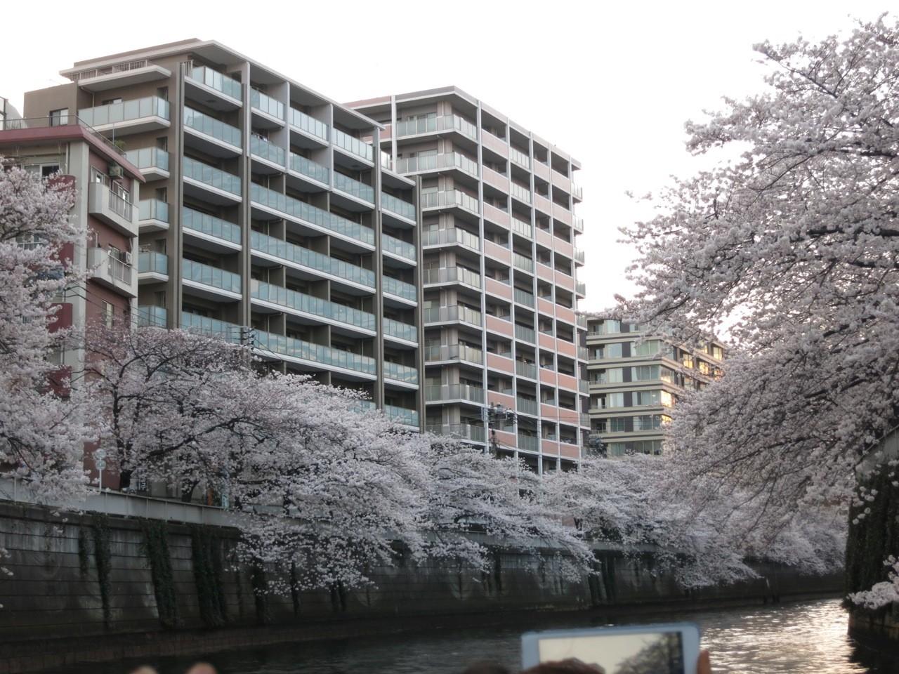 f:id:tokyocat:20150410121209j:image:w600